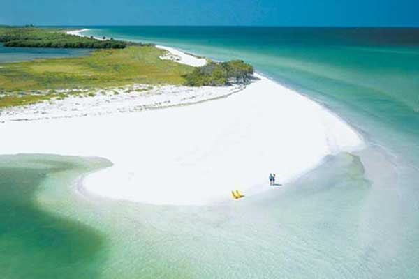 Visit Caladesi island for the day